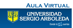 Aula Virtual -USA.png